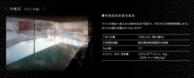 昭和の湯 ラドンの湯