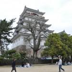 福山城に桜を見に行ってきました!ついでに遊具でも遊びました